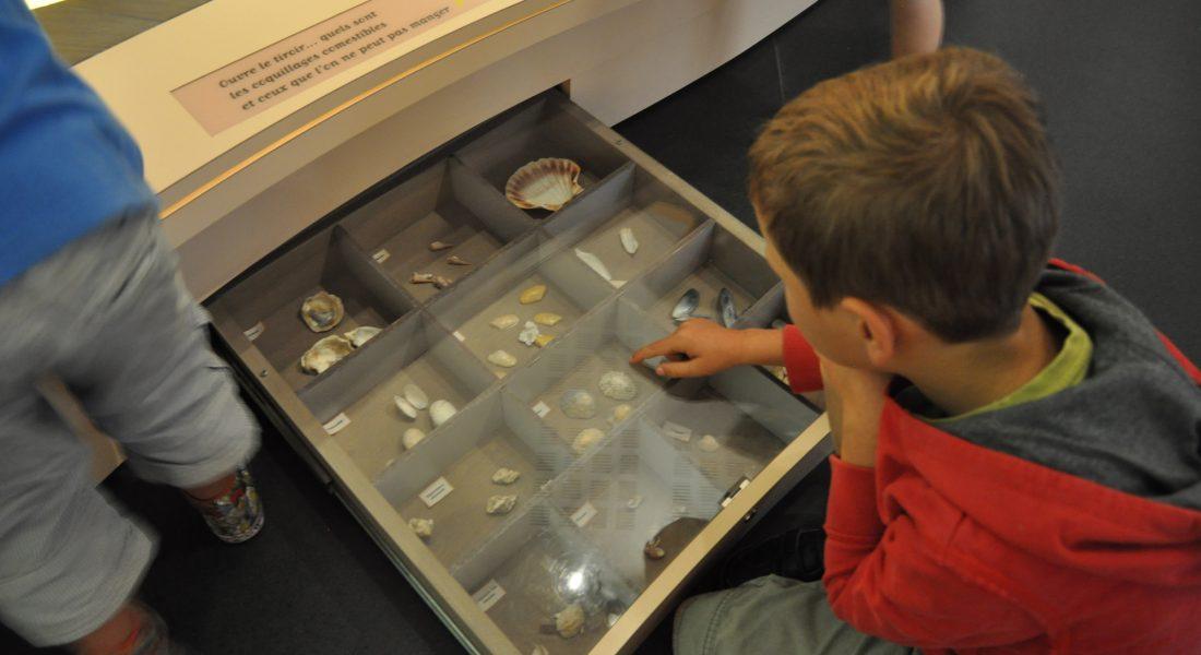 parcours pédagogique partie pêche crédit le musée de l'île d'Oléron